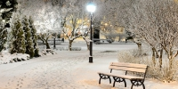 Snowy park night wallpaper 57631 - Gorod55.Ru