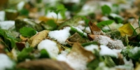 Depositphotos 128368848 stock video first snow on the ground - Gorod55.Ru